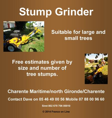 Stump grinding,tree stumps,remove tree roots,remove tree stump,charente,charente maritime,gironde