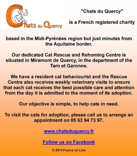 Chats du Quercy,French registered charity,Midi Pyrenees,Aquitaine,Miramont de Quercy,Tarn et Gronne.cat rescue centre,cats for adoption