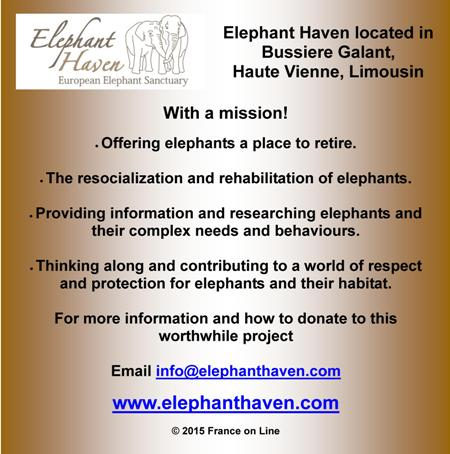 Elephant Haven,Haute Vienne,Limousin,France,retired elephants,charity for elephants