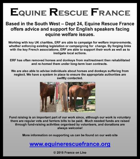 Equine Rescue France,south west,Dordogne,24,support for English speakers with horses